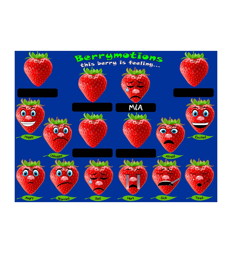 Wall - Berry Motion Board